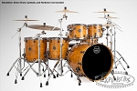Saturn V MH Exotic Studioease 5-piece shell pack with SONIClear Edge Natural Maple Burl